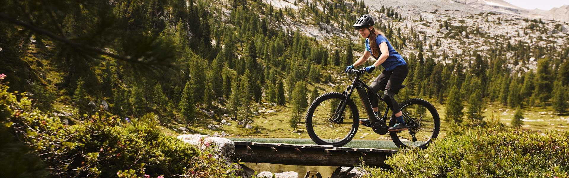 Vall E+ Pro Electric Bike