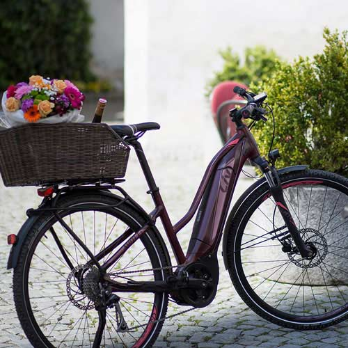 Amiti E+ 2 (2020) | Damen Trekking Fahrrad | Liv Cycling